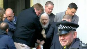 assange wikileaks preso
